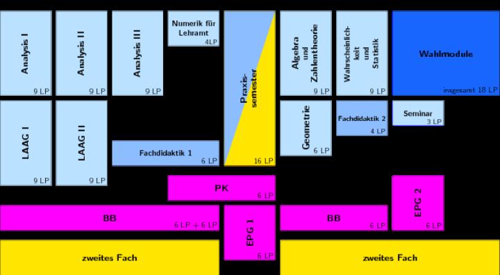 Grafik zeigt die Struktur des Studiengangs