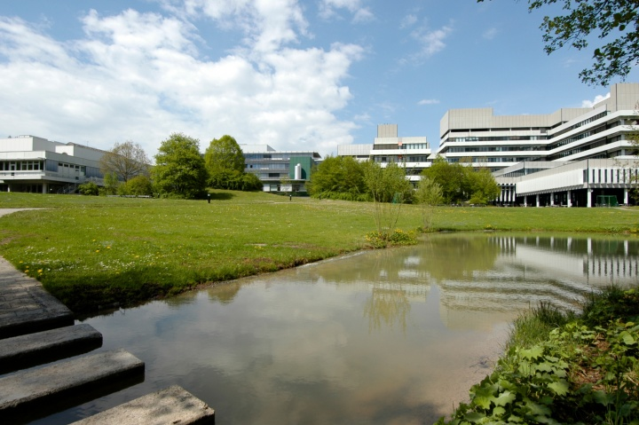 Institut fuer Festkoerperforschung (c)