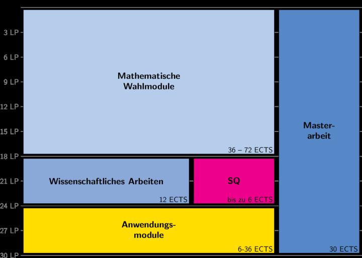 Darstellung der Struktur des Masterstudiengangs